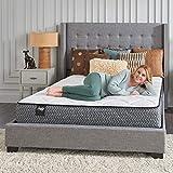 Sealy Response Essentials Bed Mattress
