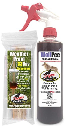 PredatorPee - 100% Pure Wolf Urine - 16oz Spray Bottle Combo with 33 Day Dispensers