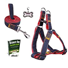 Olivery No-Pull Dog Leash Harness Set, Adjustable Heavy Duty Denim Easy Step in Collar Set for Large/Medium/Small/Extra-Small Pet Training & Everyday Walking(Red, Medium)
