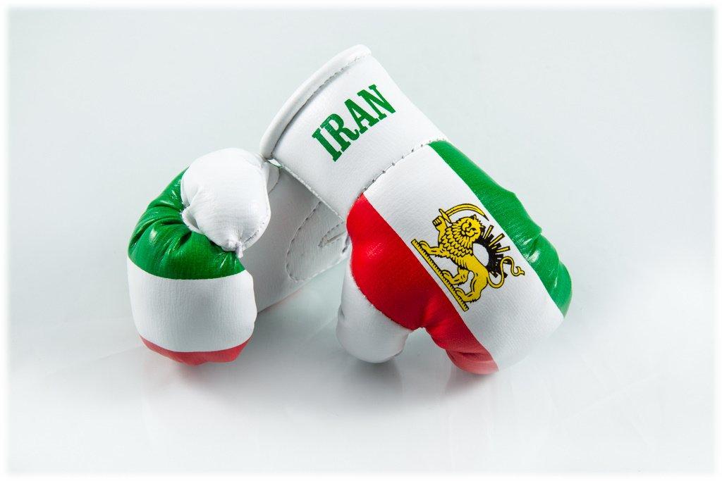 f/ür Auto-Innenspiegel 2 St/ück Miniboxhandschuhe z Mini Boxhandschuhe IRAN alt // PERSIEN B 1 Paar
