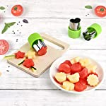 KUUQA Vegetable Cutter Shapes Set Flower Star Cartoon Animals Fruit Mold Decorating Tools for Cookies Fruit Decoration Kids Baking Craft Supplies with Cleaning Brush,12PCS 12 Vegetable/ fruit cutter mold set, easy and quickly to decorate your food and look more delicious 12 different shapes and size, include: rabbits, bears, strawberries, mushrooms, stars, love, flowers, lace Material: good quality of food grade stainless steel and PP material handguard, safe and comfortable