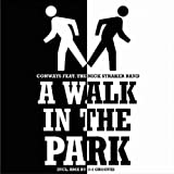 Conways Feat. Nick Straker Band - A Walk in the Park