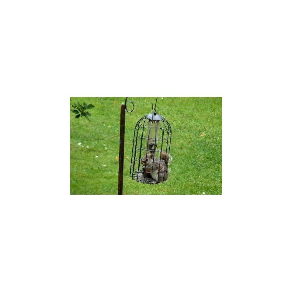 Squirrel Proof Heavy Duty Metal Bird Feeder
