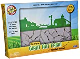 Uncle Milton Ant Farm Live Ant Habitat, Giant