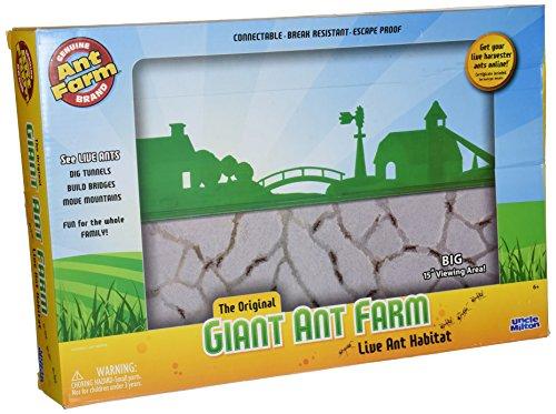 Uncle Milton - Giant Ant Farm