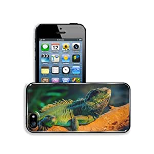 Animals Reptiles Hide Dead Wood Apple iPhone 5 / 5S Snap Cover Premium Aluminium Design Back Plate Case Customized Made to Order Support Ready 5 inch (126mm) x 2 3/8 inch (61mm) x 3/8 inch (10mm) MSD iPhone_5 5S Professional Metal Case Touch Accessories G wangjiang maoyi