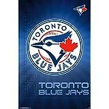 Toronto Blue Jays - Logo 16 Poster Print (22 x 34)