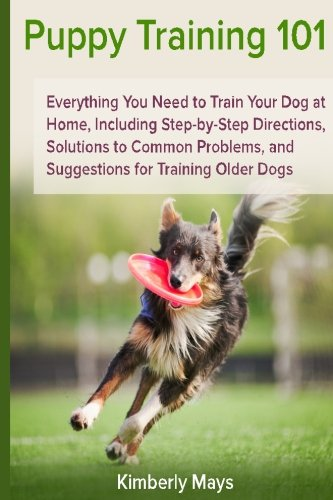 Puppy Training 101: Everything You Need to Train Your Dog at