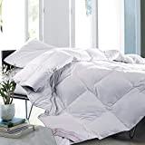 Alternative Comforter - Maple Down Superior White Queen Comforter, Down Alternative Comforters for All Season with Cotton Soft Shell, Hypoallergenic Hotel Quality Duvet Insert, 90 x 90 inches.