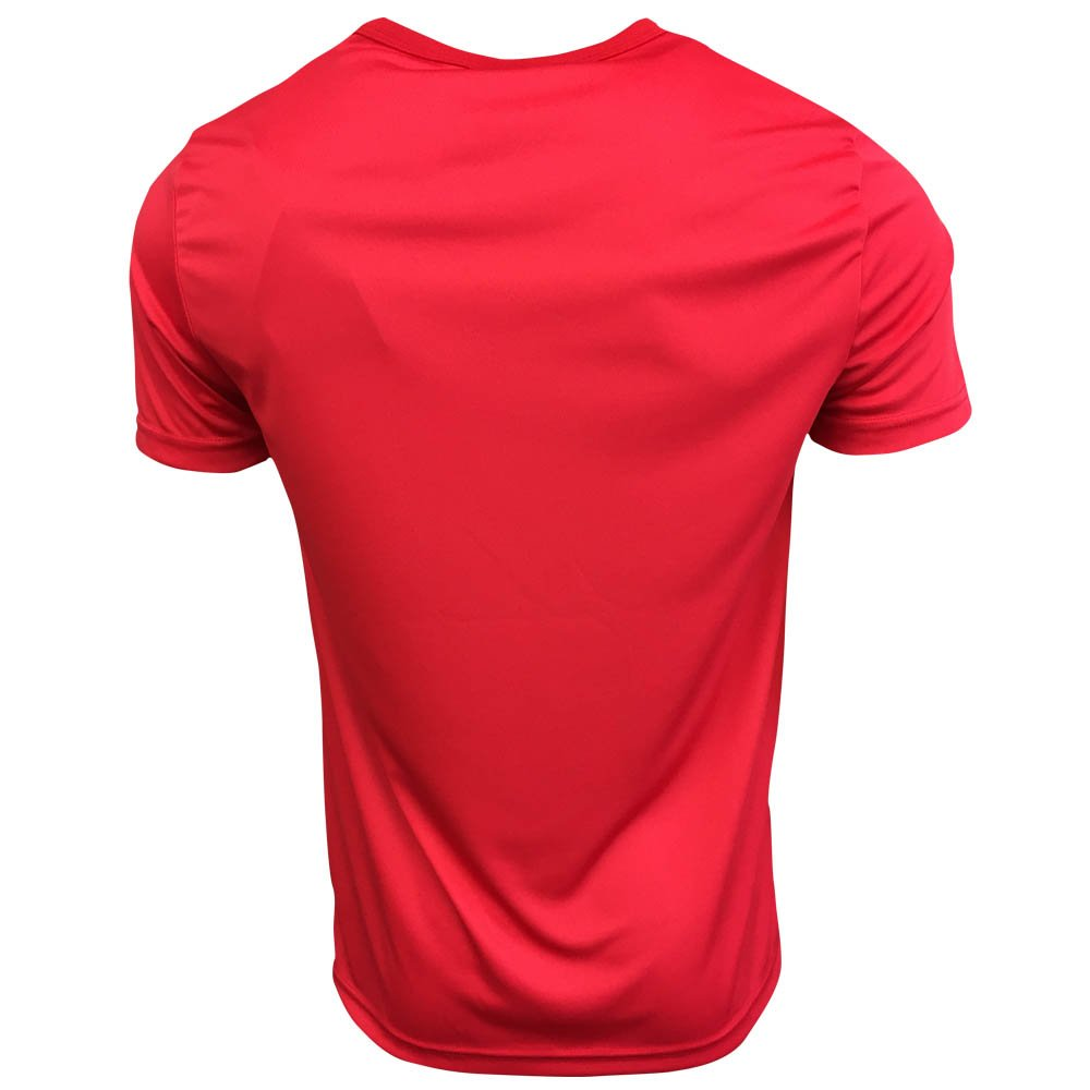 2174dc20200 Amazon.com   Le Coq Sportif 2017-2018 Fiorentina Training Tee (Red)    Sports   Outdoors
