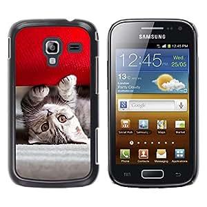TaiTech / Prima Delgada SLIM Casa Carcasa Funda Case Bandera Cover Armor Shell PC / Aliminium - Gatito americano lindo - Samsung Galaxy Ace 2