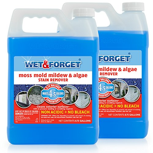 WET & FORGET .75 Gallon Moss, Mold, Mildew & Algae Stain Remover, 2 Pack (Best Moss Killer For Patios)
