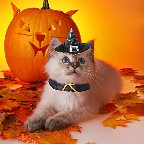 PETLESO Dog Cat Witch Costume Cat Wizard Costume Hat Witch Pet Halloween Cloak]()