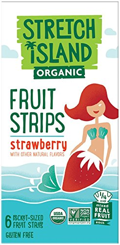 Stretch Island Strawberry Company Organic Fruit Strips, 2.96 Ounce