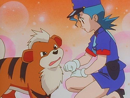pokemon season 4 - 3