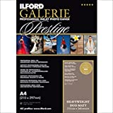 ILFORD 2003179 GALERIE Prestige Heavyweight Matt Duo - 13 x 19 Inches, 50 Sheets