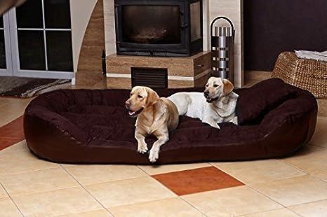 tierlando-Cama perro PHILIP Sofá-Funda de piel sintética de perros inflamable-XXL 140cm-Marrón-ph6-ll-01-gb: Amazon.es: Productos para mascotas