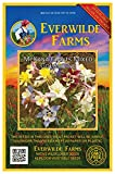 Everwilde Farms - 1250 McKana Giants Mix Columbine Native Wildflower Seeds - Gold Vault Jumbo Seed Packet