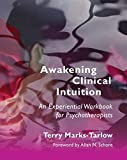 Awakening Clinical Intuition: An Experiential Workbook for Psychotherapists (Norton Series on Interpersonal Neurobiology)