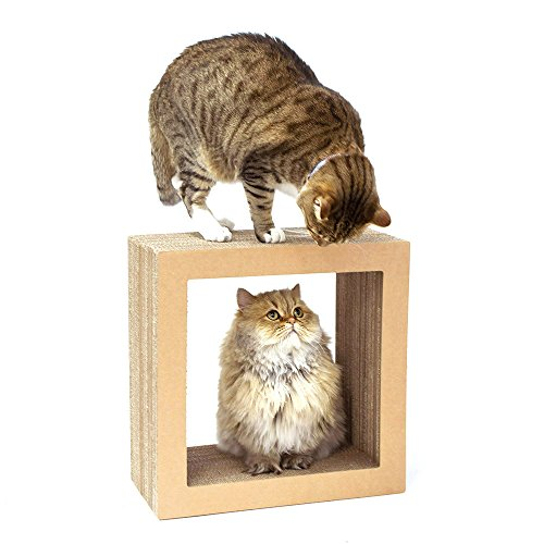 KATRIS-O-Shape-Modular-Cat-Scratcher-Block-Multi-Functional-Durable-Cat-Furniture-Cat-Tree-Condo-Original-Kraft