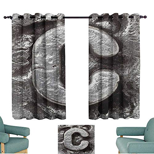 WinfreyDecor Letter C Breathable Curtain Fused Elements Aluminum Style Minuscule C Words First Name Theme Background Artwork Darkening and Thermal Insulating 55