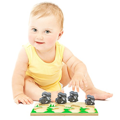 Review Chunky Puzzles Wooden Shape