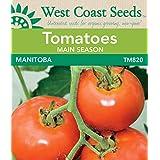 Tomato Seeds - Manitoba