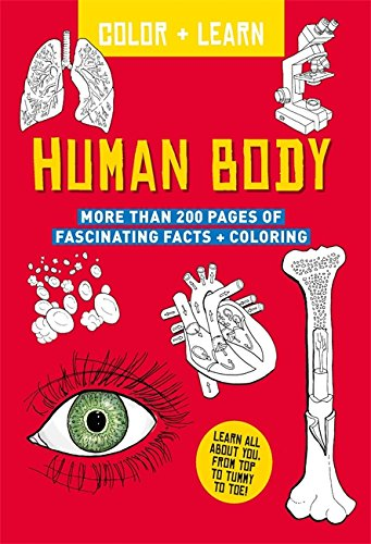 Download Color + Learn: Human Body (Colour + Learn) pdf