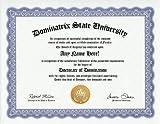 Dominatrix Degree: Custom Gag Diploma Doctorate Certificate (Funny Customized Joke Gift - Novelty Item)