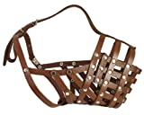 Secure Leather Mesh Basket Dog Muzzle #16 Brown - Great Dane, Saint Bernard, Mastiff (Circumference 15.5'', Snout Length 4.5'')
