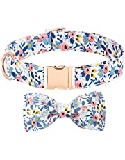 Dog Collar with Detachable Bow Tie Rose Gold Metal Buckle Floral Puppy Collar Soft Adjustable Strong and Durable Quick Release Flower Collar for Small Medium Large Dogs and Cats Pets
