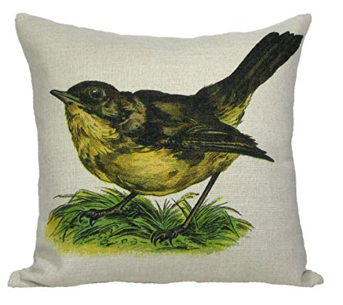 (Crafted Creations Vintage Springtime Wren Bird Antique Style Decorative Accent Throw Pillow Cover 18