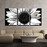 """wall26 - 3 Piece Canvas Wall Art - Sunflower in Black and White with Red Ladybug - Modern Home Decor Stretched and Framed Ready to Hang - 24""""x36""""x3 Panels"""