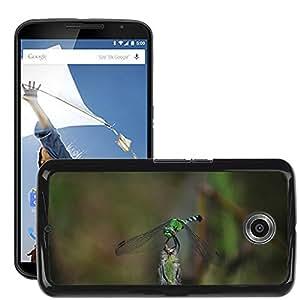 Etui Housse Coque de Protection Cover Rigide pour // M00112574 Libélula Naturaleza mosca del ala del // LG Google Nexus 6