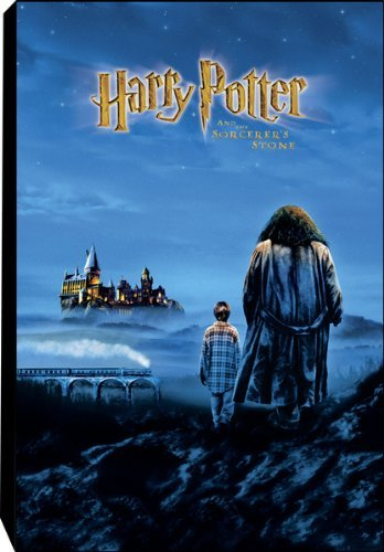 Harry Potter and The Sorcerer's Stone Canvas Art Print by NECA 16 x 24 from Harry Potter