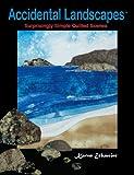 Accidental Landscapes, Karen Eckmeier, 0979203317