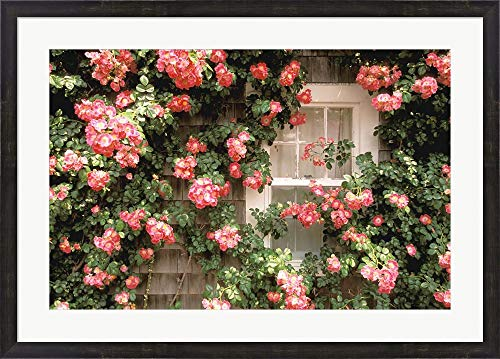 Nantucket Floral Picture Frame - Roses and Home, Nantucket Island by Walter Bibikow/Danita Delimont Framed Art Print Wall Picture, Espresso Brown Frame, 36 x 26 inches