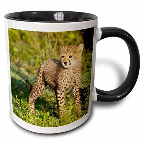 3dRose mug_71026_4
