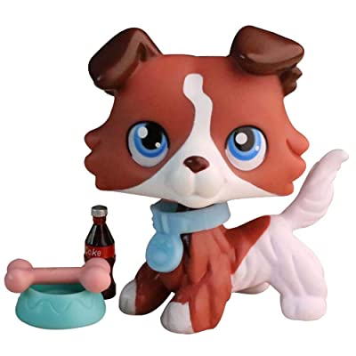 Judylovelps Coffee Collie, lps Custom Collie Coffee and White Body with Blue Eyes with lps Accessorries Collectable Figures: Home & Kitchen
