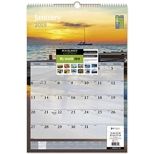 AT-A-GLANCE 2019 Monthly Wall Calendar, 15-1/2 x 22-3/4, Large, Scenic (DMW20128)