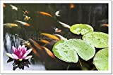 Lily Pad Pink Flower In Koi Pond Paper Print Wall Art (12in. x 18in.)