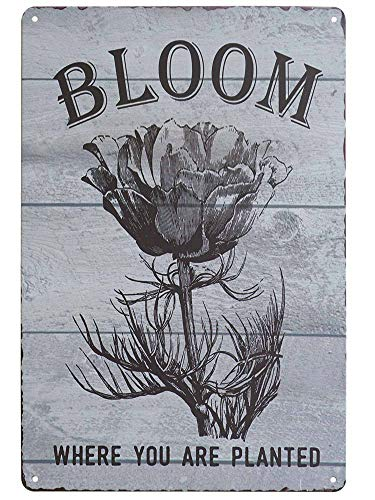 SKYC Floral Bloom Where You're Planted Vintage Metal Tin Signs Home Bar Shop Decorations Coffee Sign Gift 8X12Inch (Flower Shop Tin)