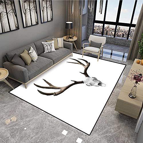 Buy fh50150 carpet basics power scrub deluxe carpet cleaner