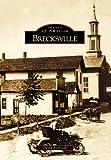 Brecksville, David Borsvold, 0738532495