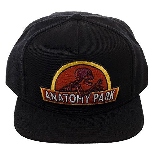 Bioworld - Rick And Morty Anatomy Park Logo Snapback Baseball Hat - OSFM