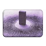 new years garage magnets - Baerg Non-Slip Stain Fade Resistant Door Mat Physics Magnet Living Dining Room Rug 23.615.70.39Inch