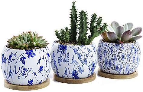 SUN-E Round Japanese Style Serial Ceramic Succulent Pots Cactus Planter Flower Pot Container with Bamboo Tray Drainage Hole Perfect Gift Idea 3 in Set 3.54 Inch