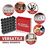 Force Magnet HIGH STRENGTH Small Round Magnets, STICK Notes on Refrigerator, Door, Whiteboard, CREATE your OWN Crafts Projects, Display Family Artwork, Strong Ceramic & SAFE, Perfect for School