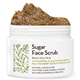 Otc Cleansing Tea - Facial Sugar Scrub Body Exfoliator - Forest Heal with Andiroba Oil & Real Strawberry Seeds, for Pore Care & Sebum Control, Skin Brightening & Hydrating Facial Scrub (100 ml / 3.38 fl.oz)