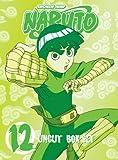 Naruto: Volume 12